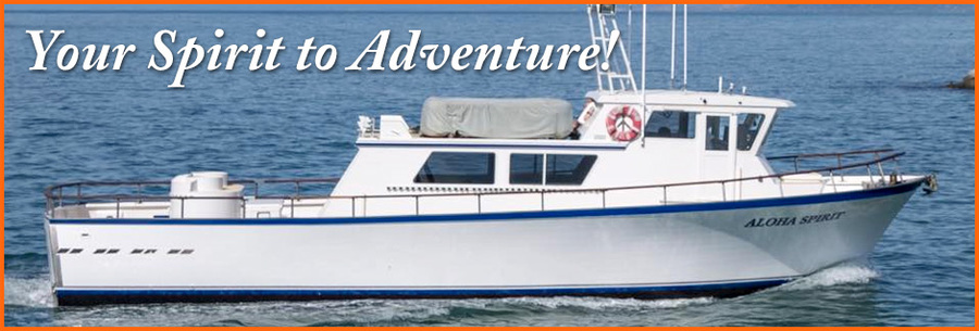 Welcome to Aloha Spirit Sportfishing